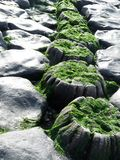 Dike stones the Netherlands Royalty Free Stock Photo