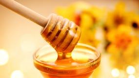 Dikke honing die van houten stok druipen royalty-vrije stock foto's