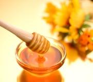 Dikke honing die van houten stok druipen royalty-vrije stock afbeeldingen