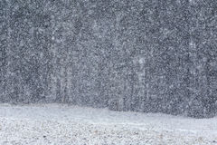 Dikke sneeuwval Royalty-vrije Stock Fotografie