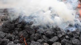 Dikke Witte Rook van het Branden van Steenkool stock footage