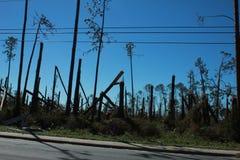 Dilúvio do furacão do furacão da chuva de dano da tempestade da inundação imagens de stock