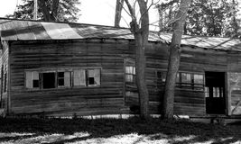 Dilapidated barn in black and white. A run-down barn shot in black and white. The trees growing next to the barn have caused structural instability Royalty Free Stock Photo