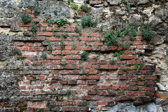 dilapidated brick wall Royalty Free Stock Photos