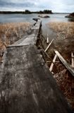 Dilapidated dock on Reed Lake in Northern Manitoba Stock Photos