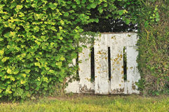 Dilapidated gate in vegetation Royalty Free Stock Image