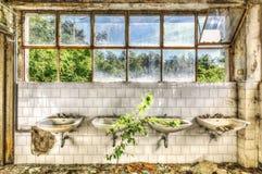 Dilapidated gootstenen in het toilet van een verlaten asiel stock afbeeldingen