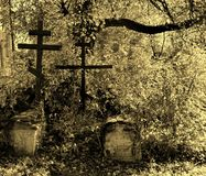 Dilapidated graves in the old burying-ground. Royalty Free Stock Photos