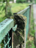 Dilapidated mental fence in the park. Dilapidated mental fence in park Royalty Free Stock Image