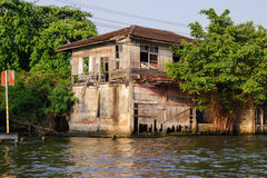 Dilapidated old house. And a tree near the water stock image