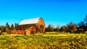Dilapidated old red barn in Campbell Valley Regional Park in the Township of Langley. British Columbia, Canada royalty free stock photos