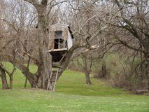 Dilapidated Old Treehouse in Countryside. Old and dilapidated rustic and risky treehouse in rural countryside with green lawn band bare trees. Backyard insurance royalty free stock photos