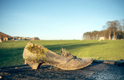 Dilapidated Shoes Royalty Free Stock Photo