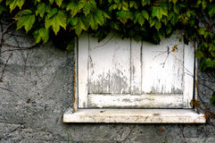 Dilapidated venstervensterbank Stock Foto