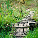 Dilapidated wooden footpath Royalty Free Stock Photos