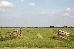 Dilapidated wooden open gate is overgrown with weeds, pasture and a light blue sky with clouds. royalty free stock image
