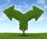 Dilema crescente do negócio Imagens de Stock Royalty Free