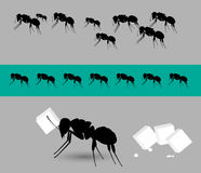 Diligent Ants Team Vector Royalty Free Stock Photo