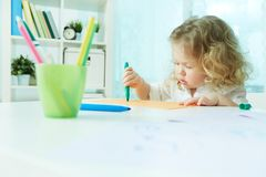 Diligent cutie Royalty Free Stock Photo
