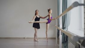 Diligent little ballet student in bodysuit is having individual ballet lesson with professional teacher learning. Movements and positions raising leg backward stock video footage
