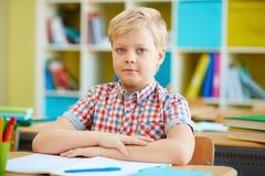 Diligent schoolboy Stock Images