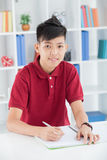 Diligent schoolboy Stock Photography