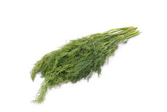 Dill. Sheaf of green dill, isolated over white background Royalty Free Stock Images