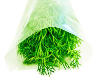 Dill. Stockfotos