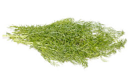 Dill. Bunch of fresh green dill spice. On white Stock Photo