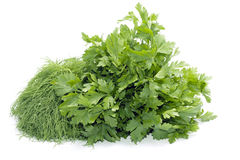 Dill And Celery Stock Images