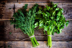 Free Dill And Parsley Stock Photos - 41218843