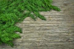 Dill auf einem Holztisch Lizenzfreies Stockbild