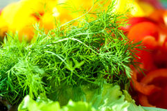Dill on a background of yellow and red bell peppers Stock Photos