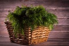 Dill Basket Royalty Free Stock Photos