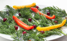 Dill with bell pepper on a plate. Dill with chopped bell peppers into strips, decorated with cranberries on a plate Royalty Free Stock Photography