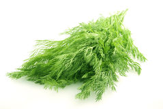 Dill bunch. Fennel bunch on white background Stock Photography