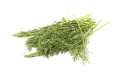 Dill in a bunch Stock Photos
