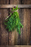 Dill bunch tied with rope Stock Photo