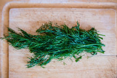 Dill. A bunch of dill on a wooden cutting board stock image