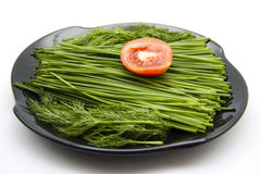 Dill and chives with tomato Stock Photo