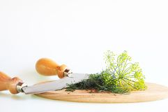 Dill and chopping knife Stock Image