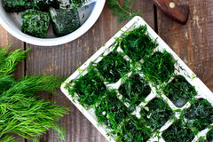 Dill cubes frozen Royalty Free Stock Photos