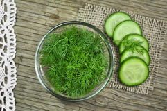 Dill and cucumber Stock Photography