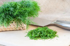 Dill cutting Royalty Free Stock Images