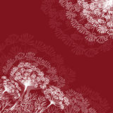Dill. On dark red background Royalty Free Stock Photo