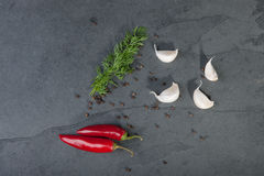 Dill, garlic, red peppers Royalty Free Stock Photos