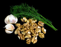 Dill, garlic and wallnuts Royalty Free Stock Image