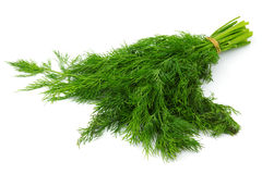 Dill Royalty Free Stock Image