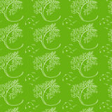 Dill hand drawn pattern Stock Photos