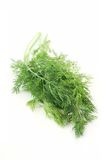 Dill herb. Green dill herb isolated on white Stock Photo